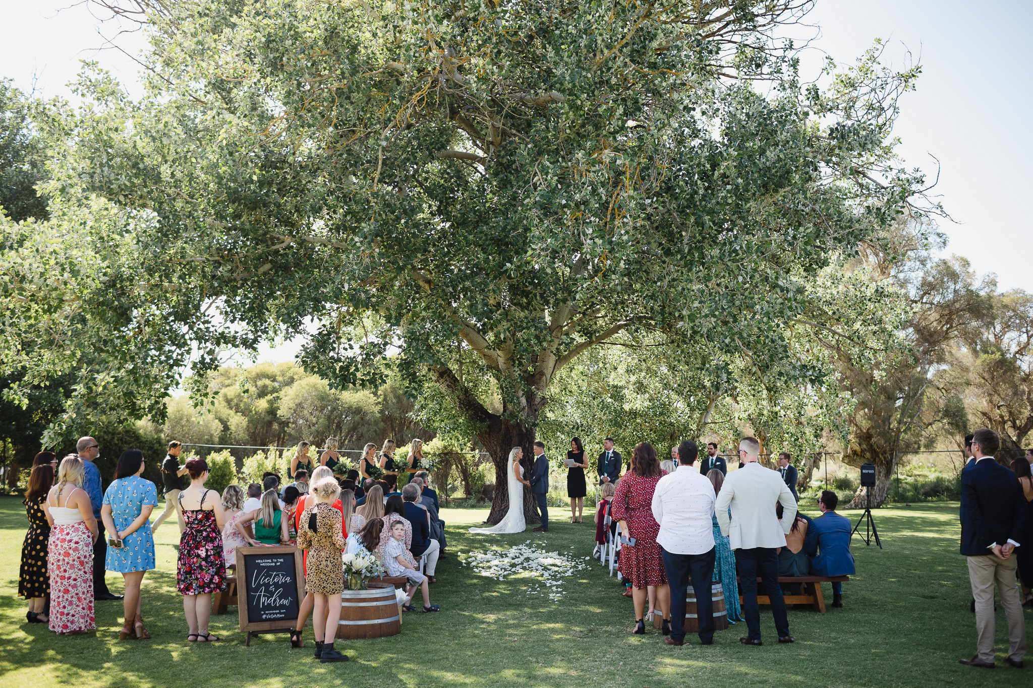 spring outdoor wedding ceremony under poplar tree at Old Broad Water Farm in Busselton