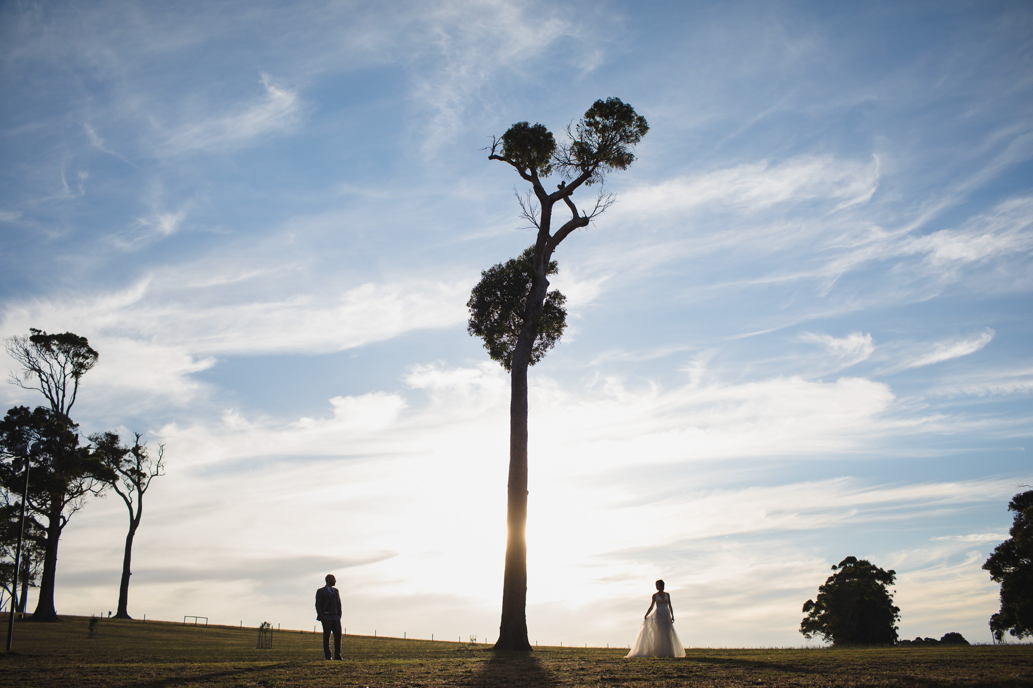 Bride and groom standing either side of a huge tree at Leeuwin Estate in Margaret River on their wedding day