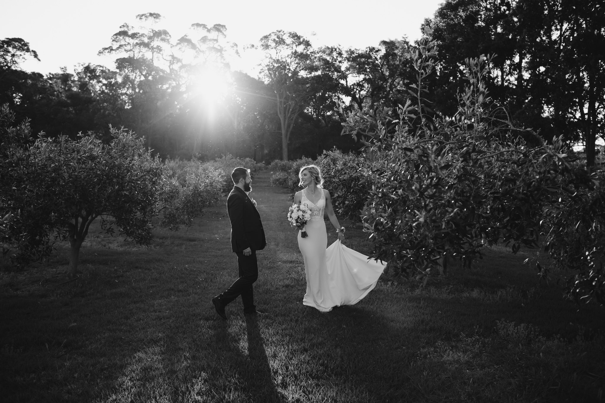 bride and groom walking through olive groves at Robert Oatley winery wedding in Margaret River