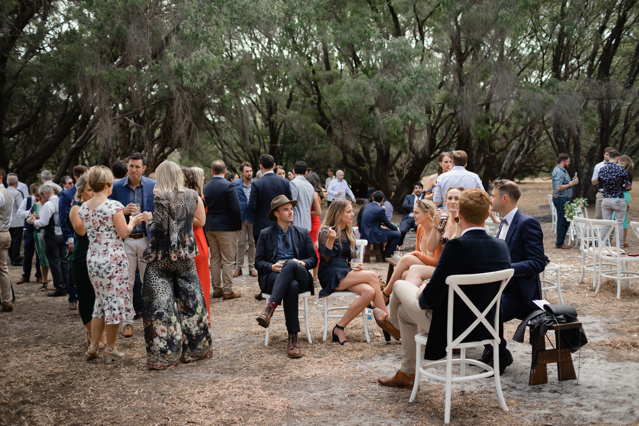 Wedding guests enjoying drinks after ceremony in a grove of peppermint tress at outdoor bush location in Australia