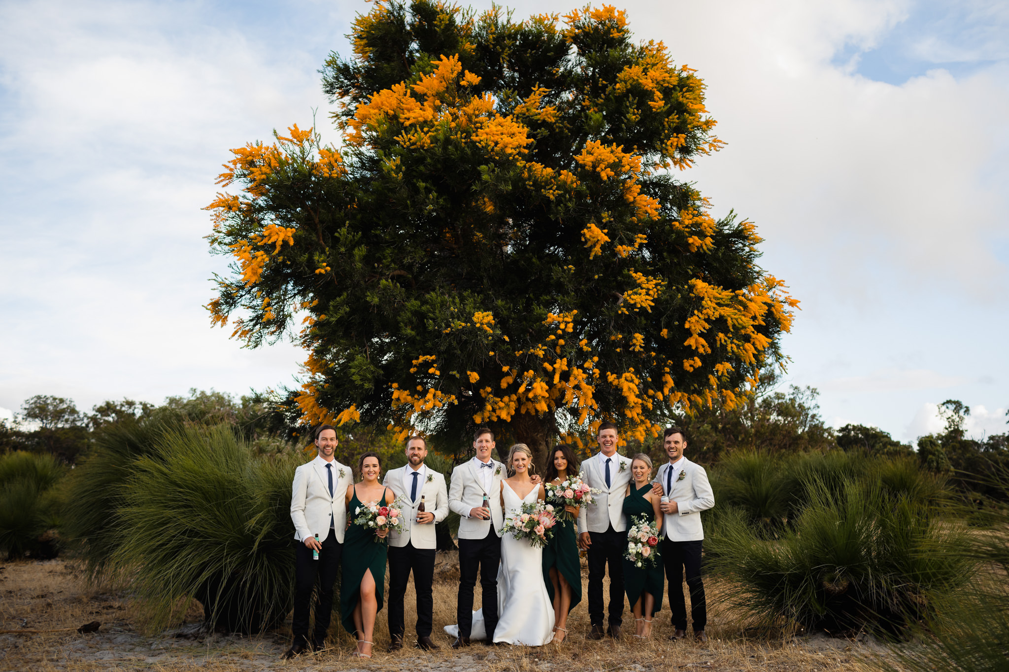 Bridal party posing in front of yellow flowering Australian Christmas tree at farm wedding at Solitaire Homestead in Yallingup