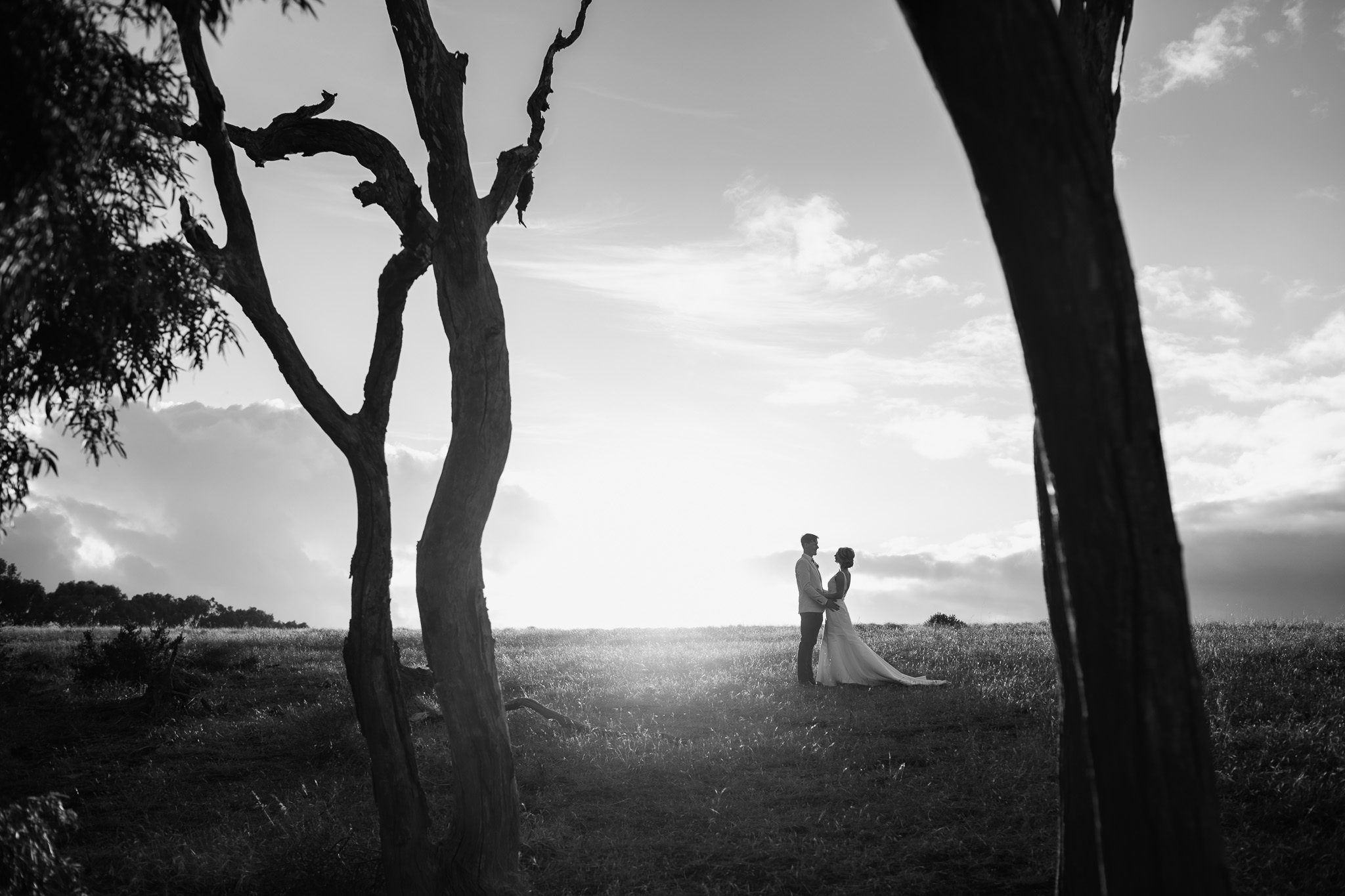 black and white photo of bride and groom in field of grass framed between dead trees in Yallingup