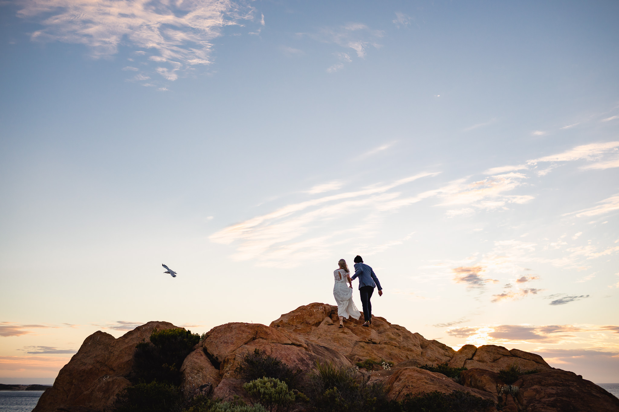 Wedding photo of bride and groom walking up rock at Wyadup Injidup near Yallingup with seagull flying past at sunset