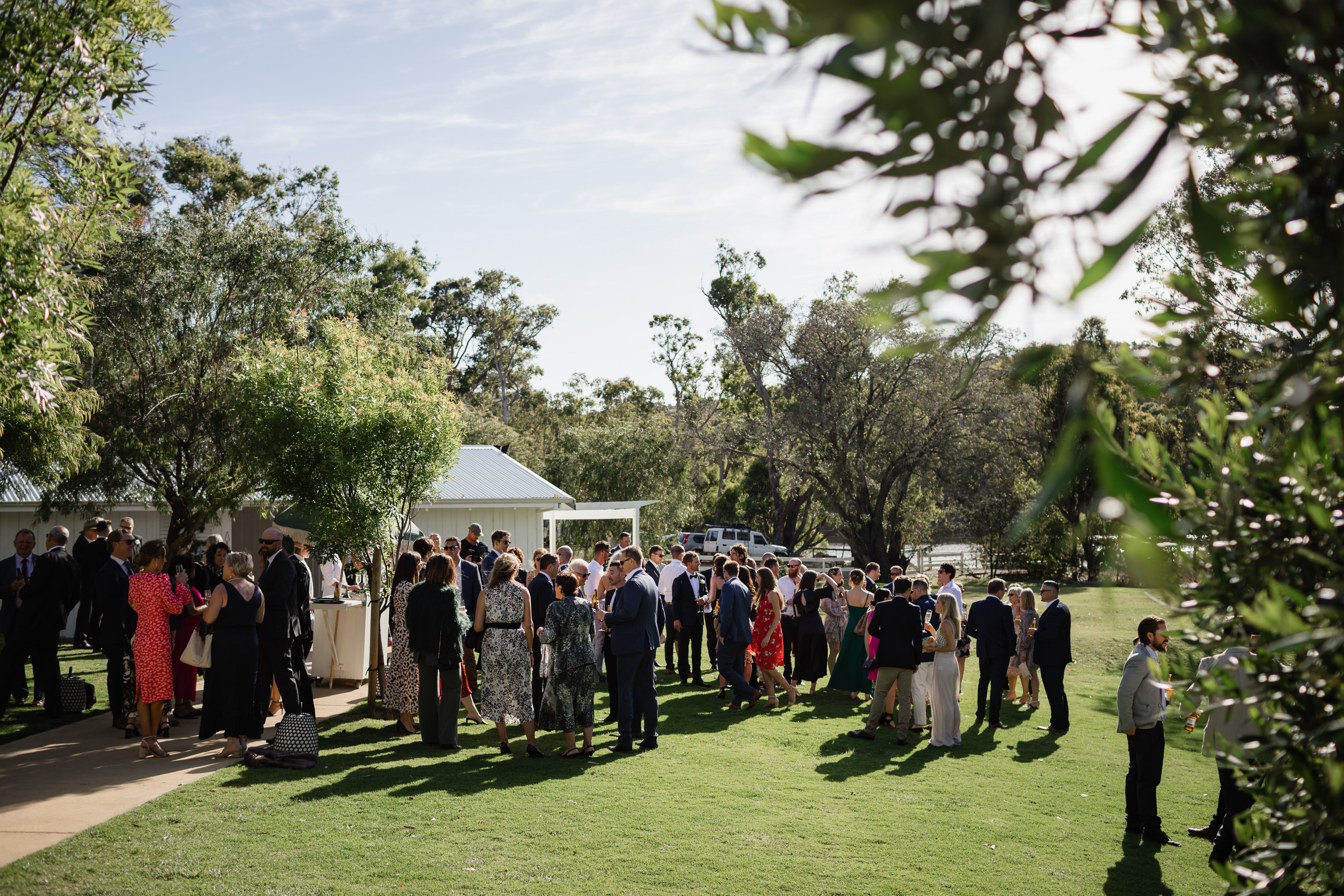 Large group of wedding guests enjoy celebrations and drinks in the sunshine at Meelup Farmhouse